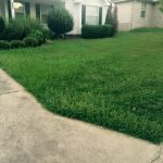 We Love Lawn Care! Our hard work goes to show of this beautiful landscaping in Little Rock, AR
