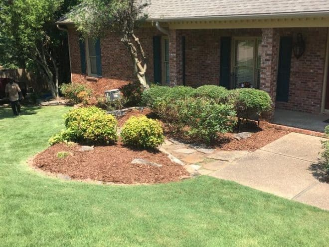 Lawn care clean-up in Little Rock After Photo