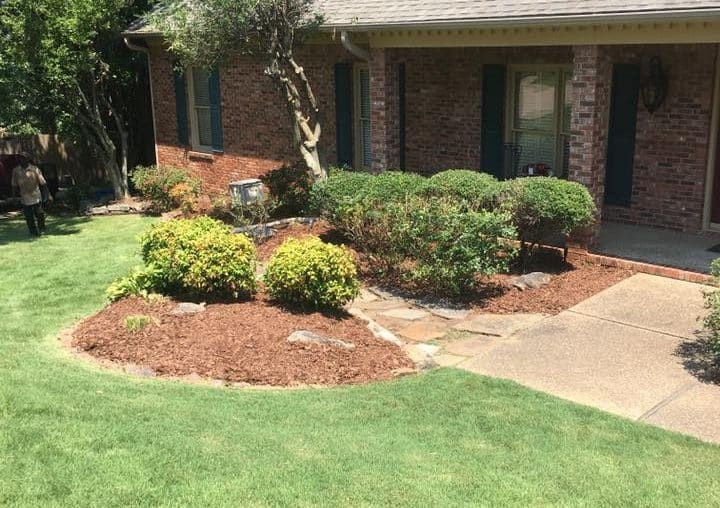 Landscaping clean-up After Photo