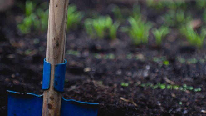 A Closer Look at Dirt: Understanding Soil Types